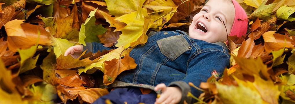autumn-1020x360